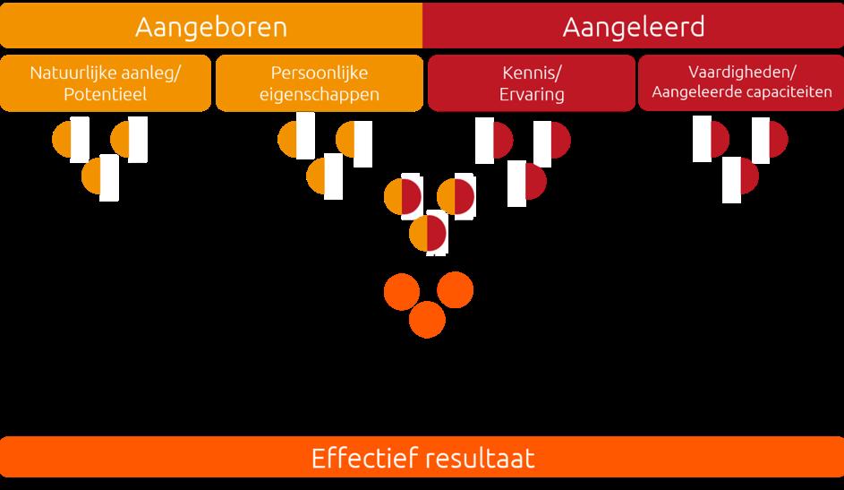 PPA Persoonlijk Profiel Analyse